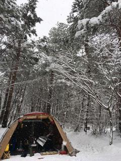 雪 - No.309447
