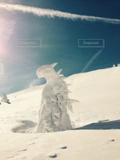 冬 - No.321325