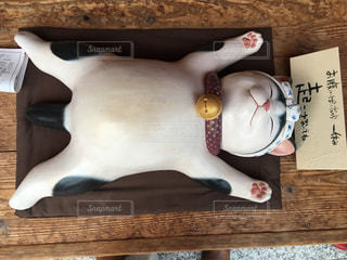 猫 - No.362795