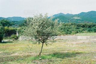 風景 - No.310042