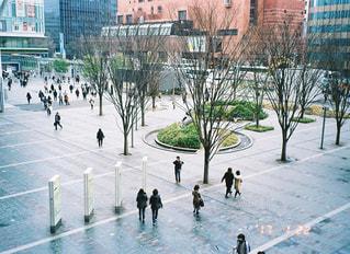 博多駅の写真・画像素材[1061092]