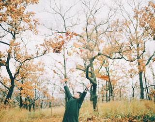 秋あそびの写真・画像素材[1064150]