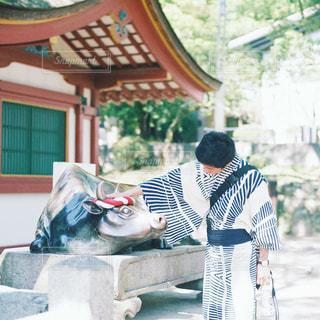 太宰府天満宮の写真・画像素材[1108016]