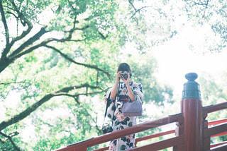 新緑の太宰府天満宮の写真・画像素材[1108017]
