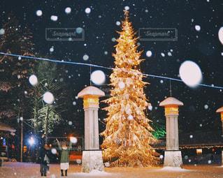 サンタクロース村のクリスマスツリーの写真・画像素材[1792056]