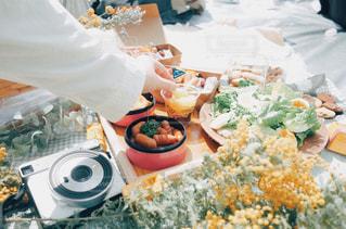 お花見ピクニック!の写真・画像素材[1884030]