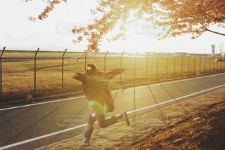 夕日とジャンプの写真・画像素材[3011071]
