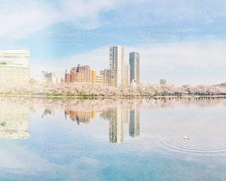 上野公園の桜の写真・画像素材[3014507]