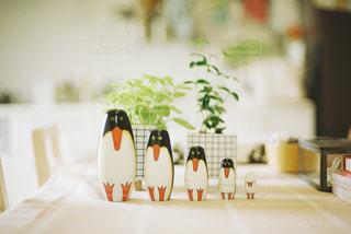 ペンギン兄弟の写真・画像素材[3014563]