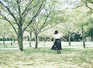 公園を新緑と女の子の写真・画像素材[3014568]