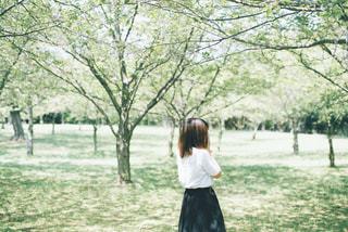 新緑の中にの写真・画像素材[3014569]