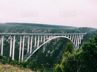 橋の写真・画像素材[310557]