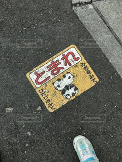 道路の写真・画像素材[362965]