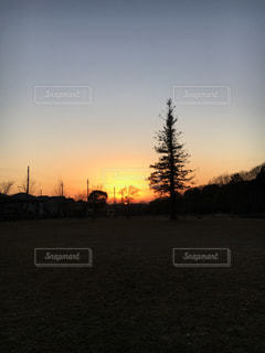 公園の写真・画像素材[327736]