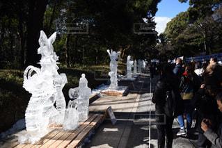 氷の彫刻の写真・画像素材[314001]