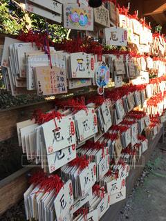 箱根神社の写真・画像素材[318390]