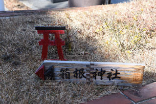 箱根神社の写真・画像素材[323305]
