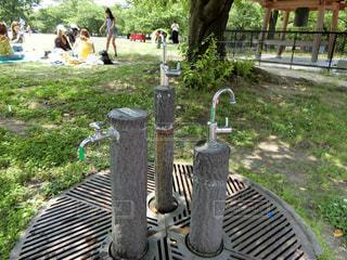 公園の写真・画像素材[541262]