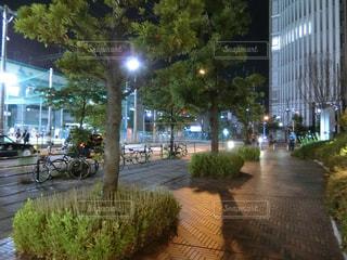 夜の写真・画像素材[559053]