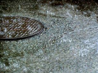 雨の写真・画像素材[601082]