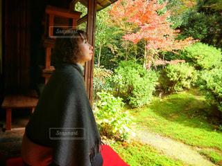 日本庭園を眺める女性の写真・画像素材[864577]
