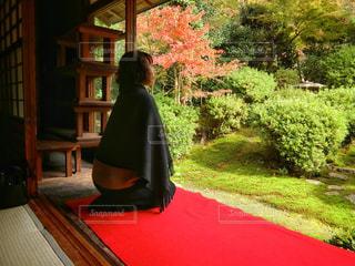 日本庭園を眺める女性の写真・画像素材[864578]