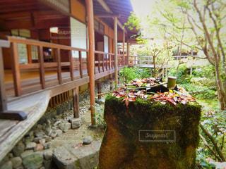 お寺の中庭の写真・画像素材[865430]