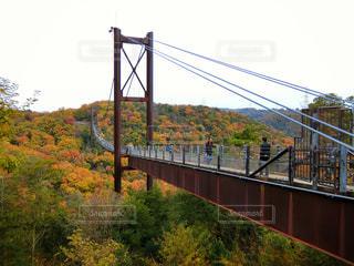 吊り橋の写真・画像素材[890490]