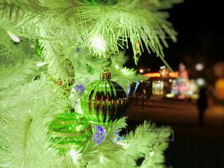 クリスマスツリーの写真・画像素材[914627]