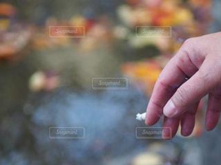 喫煙の写真・画像素材[2768330]