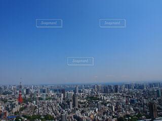 東京タワー - No.319851