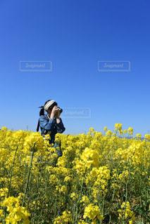 カメラ女子の写真・画像素材[445750]