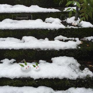 雪の写真・画像素材[312380]