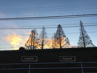 空の写真・画像素材[319522]