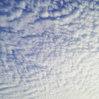 雲の写真・画像素材[313128]