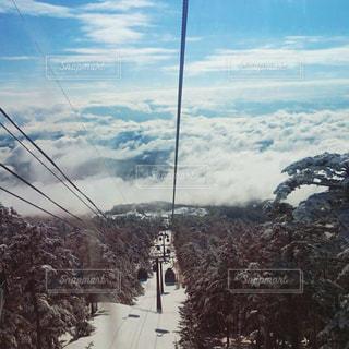 スキーの写真・画像素材[313140]
