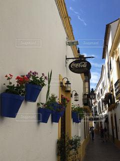 スペイン アンダルシア地方の写真・画像素材[313239]