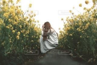 女性の写真・画像素材[2660]