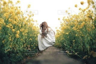 女性の写真・画像素材[2656]