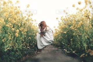 女性の写真・画像素材[2653]