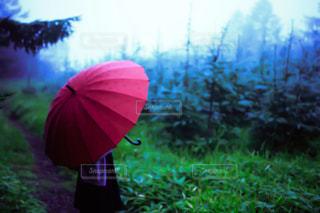 赤い傘をさしている女性の写真・画像素材[883034]
