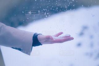 雪の写真・画像素材[895656]