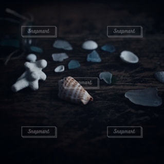 貝殻の写真・画像素材[2778]