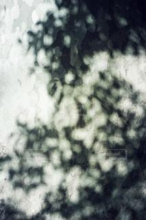 アートの写真・画像素材[2732]