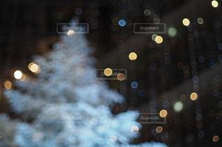 夜の写真・画像素材[2704]
