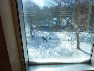 冬の写真・画像素材[321289]