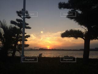 海の写真・画像素材[321308]