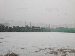 雪 - No.316552