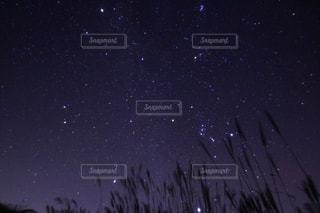 夜の空の写真・画像素材[856808]