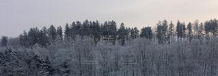 冬の写真・画像素材[351715]